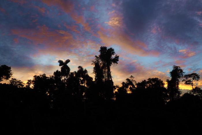 Amazon - Amazon Sunset