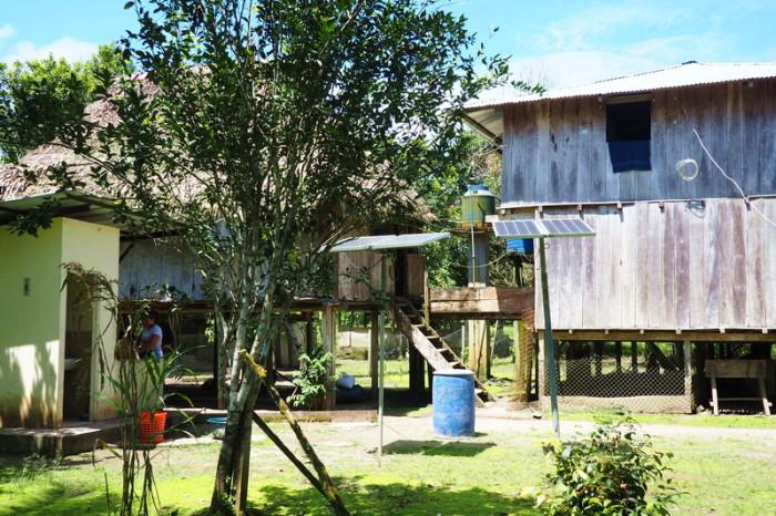 Amazon - The local community farm