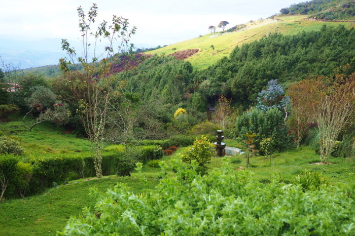Ecuador - The beautiful gardens of Hacienda El Hato