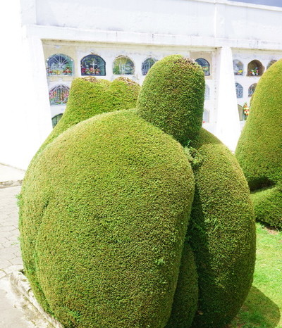 Ecuador - The topiary art was very detailed!