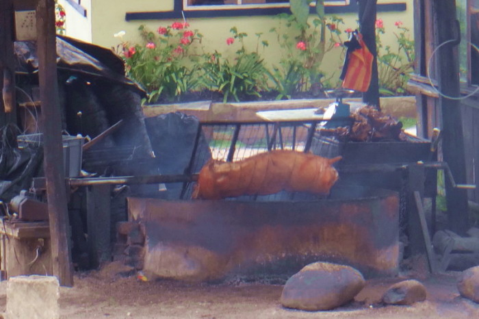 Ecuador - We saw this pig roasting on a spit about 30 kms from Cuenca ... pity it was only 10am and we were still feeling full from eating danishes from Maria's Alemania!