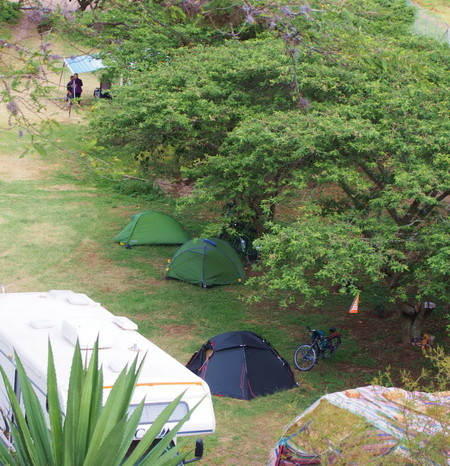 Ecuador - Our tents lined up at Finca Sommerwind