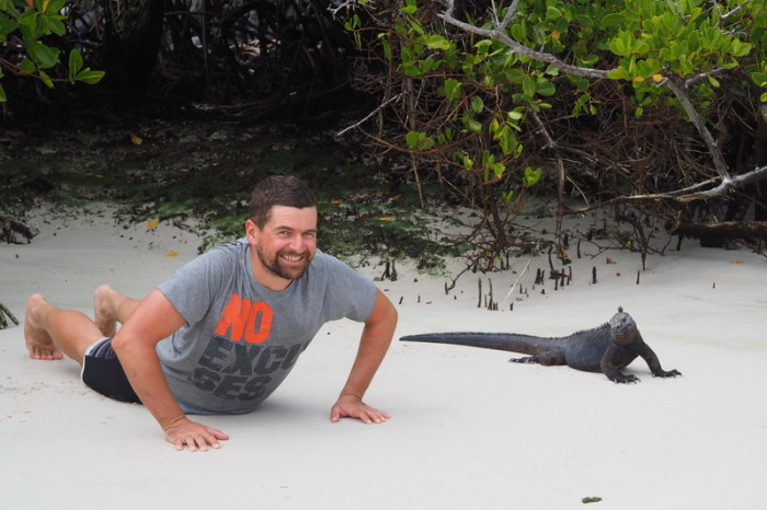 Galapagos - Two Marine Iguanas catching some sun! Turtle Bay, Santa Cruz Island