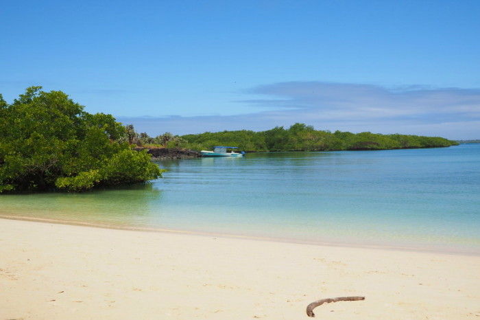 Galapagos - Calm swimming beach near Turtle Bay, Santa Cruz Island