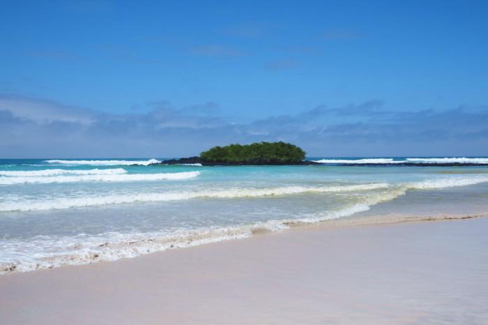 Galapagos - Turtle Bay, Santa Cruz Island
