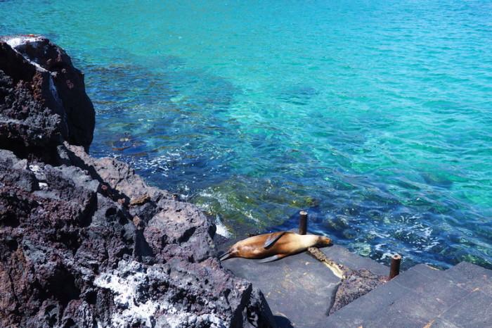 Galapagos - Bartolome Island