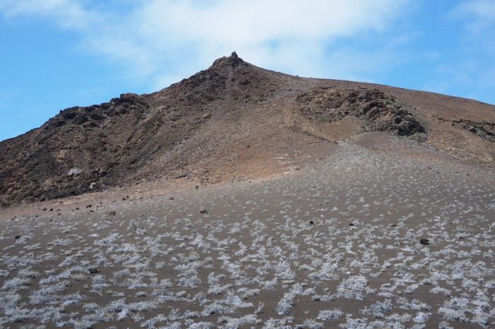 Galapagos - Views while climbing Bartolome Island