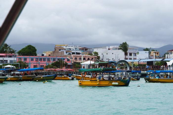 Galapagos - Puerto Ayora, Santa Cruz Island