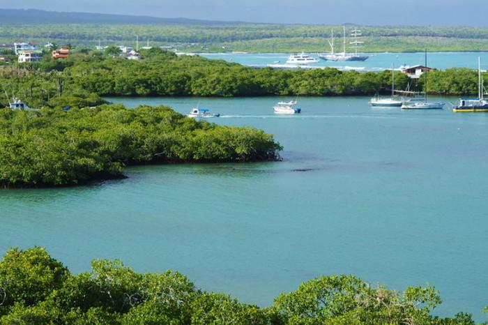 Galapagos - View of Academy Bay, Santa Cruz Island