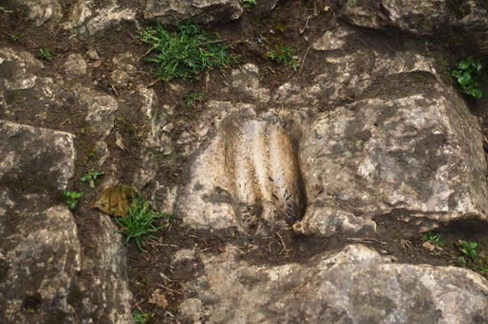 Peru - Imprint of a llama hoof