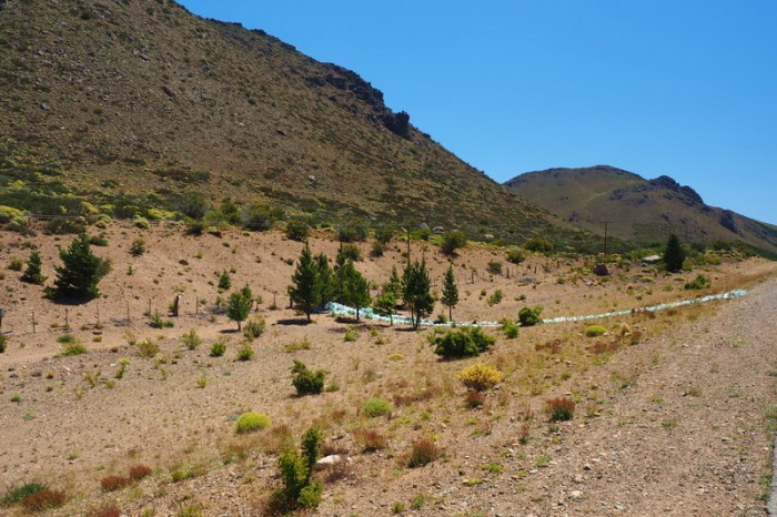 Argentina - We came across this Difunta Correa Shrine - the Patron Saint of Travellers - at just the right time!