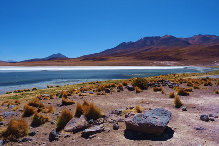 Bolivia - Day 2 of the Laguna Route: Laguna Canapa