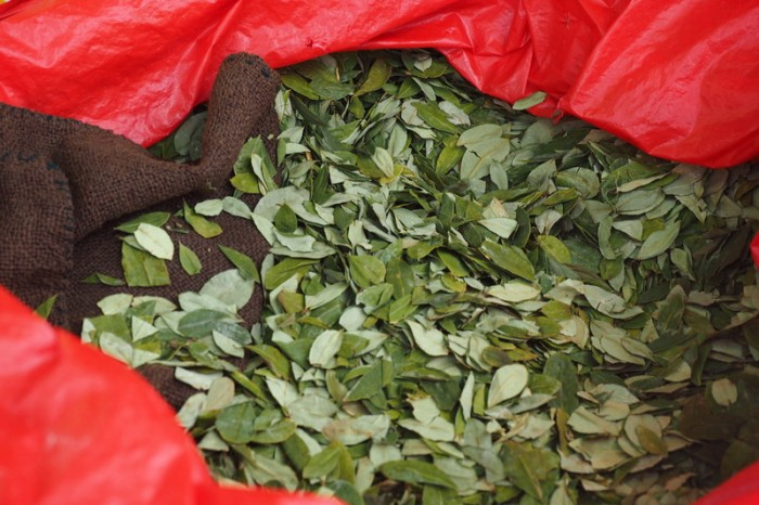 Bolivia - Bag of coca leaves, Miners' Market, Potosi