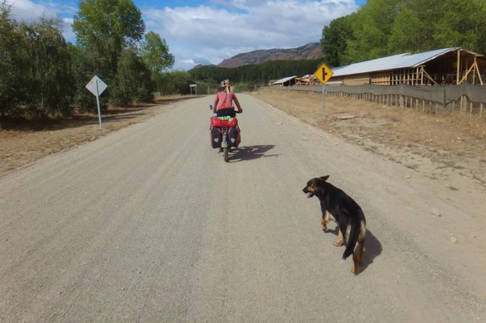 Chile - Leaving Cochrane we were befriended by two lovely trail dogs!