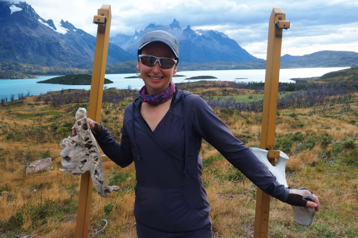 Chile - Day 2: Hiking the Q Loop - Torres del Paine - Overlooking Pehoe Lake