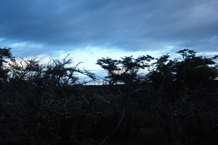 Chile - Views from our wild camp on the way to Punta Arenas
