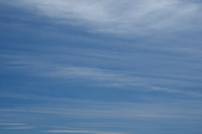 Argentina - Eagles overhead